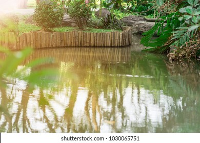 Pond in public park.