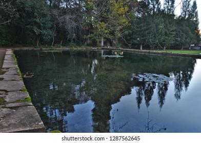 Pond in Quinta das Lagrimas Garden. Coimbra, Portugal