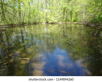 Pond or Small Lake in Conservation Area in May near Kansas City, Missouri
