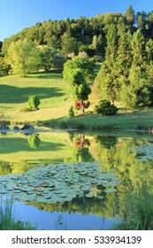 Pond in summer at the Aubonne arboretum, Canton of Vaud, Western Switzerland