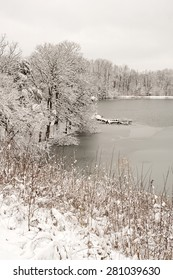 Pond and surrounding trees in fresh snow