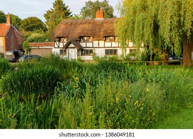 The pond and thatch cottage bathed in evening sun light in Oakley hampshire