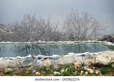 Pond with water and trees without leaves