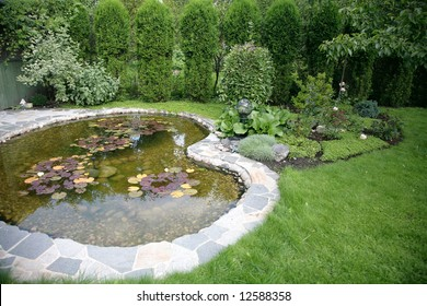 pond with water-lily - beautiful element landscape