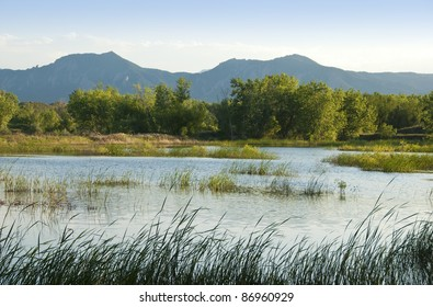 Pond in a wildlife refuge area on the Colorado prairie with mountains in the background, grasses and trees