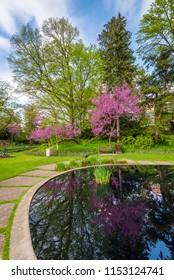 Pond at the WJ Beal Botanical Garden, Michigan State University, in East Lansing, Michigan