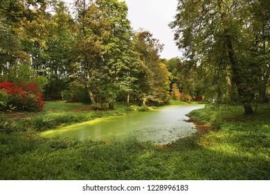Pond in Yasnaya Polyana - Bright Glade homestead. Tula oblast. Russia