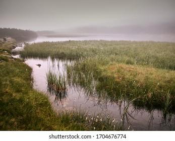 ponds in the hala gasienicowa, Polish Tatras