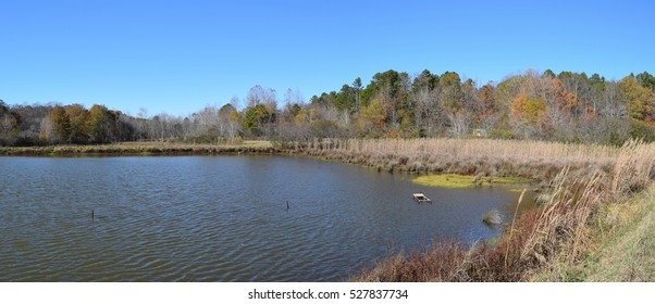 Ponds and trees in fall in Mississippi