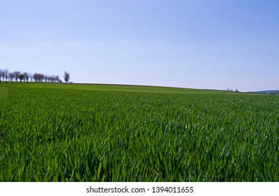 Ponitz / Germany: View over the lush green fields in Eastern Thuringia on a sunny day in April