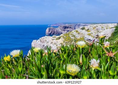 Ponta da Piedade cliffs near Lagos, Algarve, Portugal