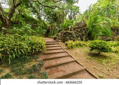 Ponta Delgada, Azores - May 05,2017: Antonio Borges Botanical Garden in Ponta Delgada. Ponta Delgada on the island of Sao Miguel is the capital of the Azores.