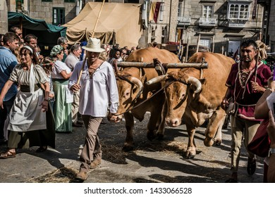 Pontevedra, Galicia/Spain - September 02 2017: Traditional Galician cart pulled by two oxen and people with old clothes parading during the medieval fair called Feira Franca in Pontevedra (Spain)