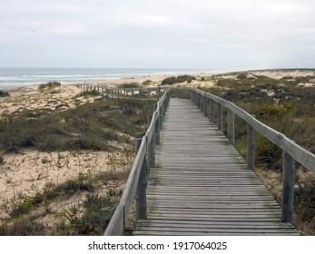 pontoon in the beach, outdoor photo