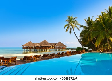 Pool on tropical Maldives island - nature travel background