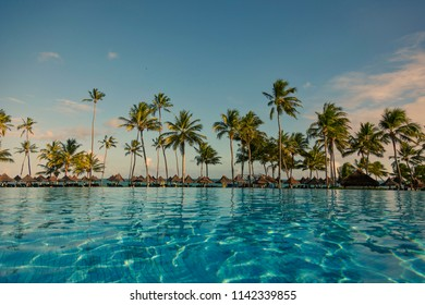 Pool with palm trees near the ocean during a beautiful sunset in Praia do forte, Bahia, Brazil.