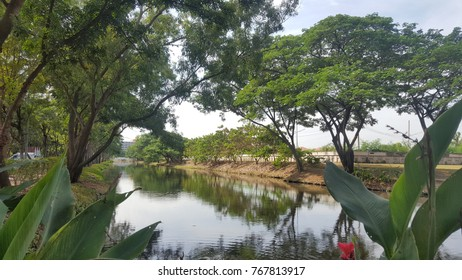 Pool in park