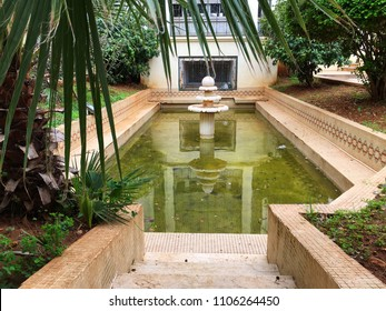 Pool in the roof garden in Museum of Fine Arts, Algiers, Algeria.