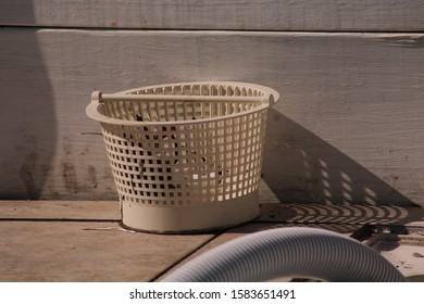 Pool skimmer basket with misc detritus sitting against white 2x8 casting a shadow.