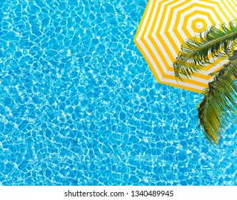 Pool surface umbrella and palm tree from above