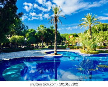 Pool view with blue sky, white clouds,palms and trees