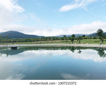 Pool And View of mountain.