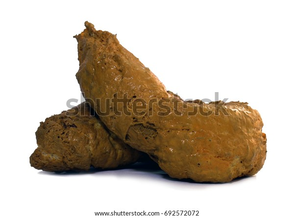 poop-isolated-on-white-background-600w-692572072.jpg