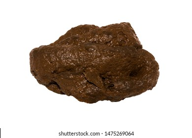 Poop isolated on white background.Shit on a white background.Human excrement.