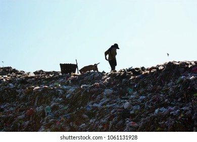 Poor people and dogs find or searching garbage in landfill for sell to reuse and recycle.