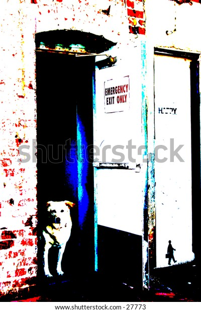 Pop Art of a dog in a doorway Big Bold images from the 60's and 70's, and again now! In this gallery you will find My images as Pop Art, perfect for Posters, Post Cards, Greeting Cards, Web Sites, Back Grounds and more.
