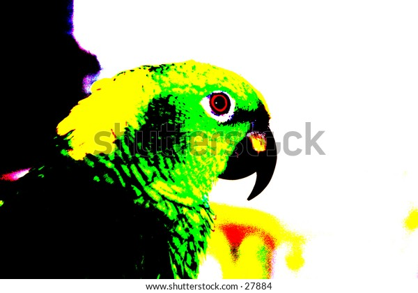 Pop Art of a Parrot with beautiful bright viberant colors
