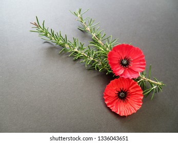 Poppies and rosemary for remembrance worn on Anzac Day and Remembrance Day