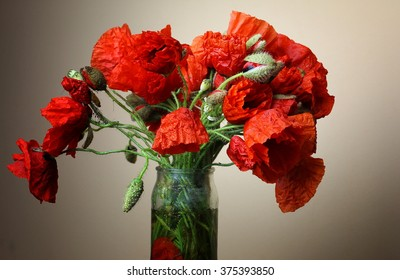 poppies in a vase, still life with poppies - closeup