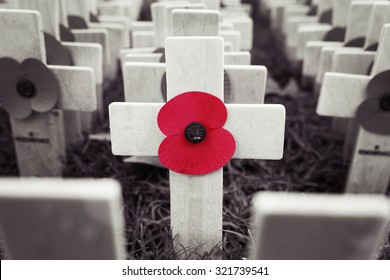 Poppy Cross, Remembrance day display in Westminster Abbey