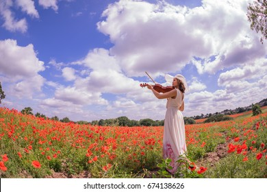 poppy fields in the summertime with model playing the violin
