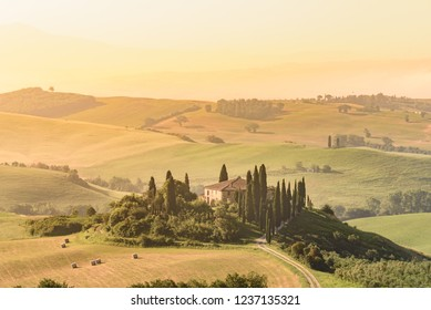 Poppy flower field in beautiful landscape scenery of Tuscany in Italy, Podere Belvedere at San Quirico d'Orcia in Val d Orcia Region - travel destination in Europe