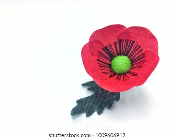 The thai veterans day images stock photos vectors shutterstock poppy flower for thai veterans day encouraging soldiers and military isolated in white background mightylinksfo