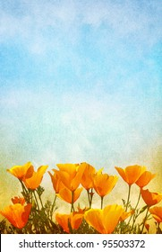 Poppy flowers with a gradient background of fog and mist.  Image displays a pleasing paper grain texture at 100%.