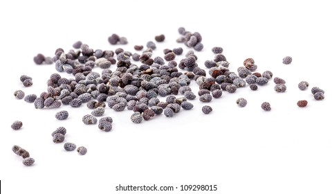Poppy seed, isolated on white, Extreme close-up