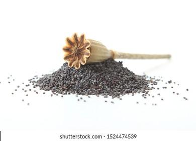 poppy seeds isolated on white