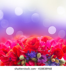 Poppy, sweet pea and corn flowers border  on bokeh background with copy space