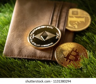 Popular crypto currencies with leather wallet on green grass.