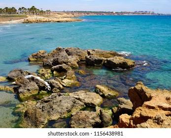 Popular great summer vacation travel destination Playa Flamenca Beach Orihuela Costa Alicante Province South Spain