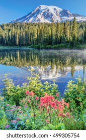 A popular view of Mount Rainier at Reflection lake with wildflowers on a calm morning. Mount Rainier National Park, Washington State, Usa.