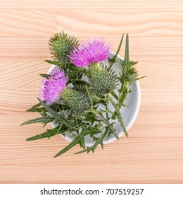Porcelain bowl with flowering Mary thistle l / Milk thistle / medicinal plant