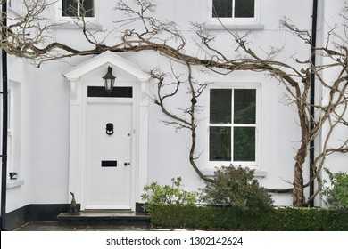 Porch, front door, flower bed, windows and a bare, leafless winter creeper / wisteria / vine. The front of a lovely large white English house in winter.