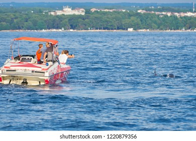 POREC, CROATIA - JULY 22, 2018: Tourists on a boat off the coast of Porec in Croatia in search of dolphins