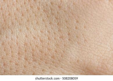 Pores on human skin macro. Close up of caucasian skin with holls