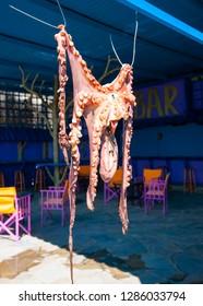 POROS, GREECE - APR 12, 2014: Fresh octapus drained in the Greek sun