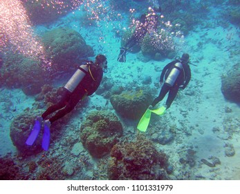 PORT DOUGLAS, AUSTRALIA -1 AUG 2017- Tourists snorkeling in the Coral Sea on the Great Barrier Reef near the Agincourt Reef in Far North Queensland, Australia.